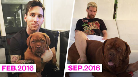 Chó nhà Messi